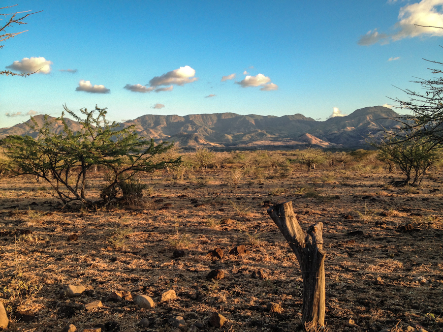 A dry field at the foot of a deforested mountain range in San Juan de Limay, Nicaragua.